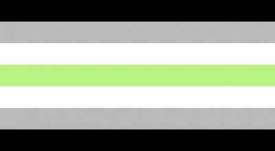 bandiera lgbt, bandiera agender, guida completa