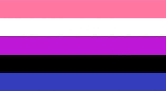 bandiera genderfluid, bandiera lgbtq