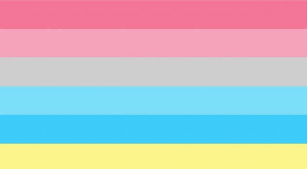 bandiera genderflux, bandiera lgbtq