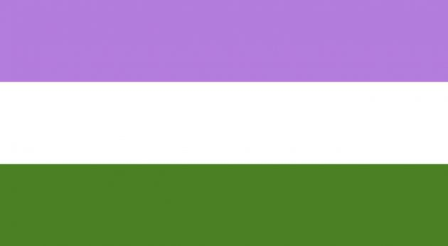 bandiera genderqueer, bandiera lgbtq