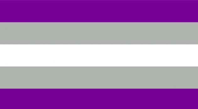 bandiera graysessuale, bandiera lgbtq