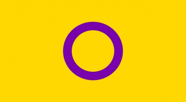 bandiera intersessuale, bandiera lgbtq