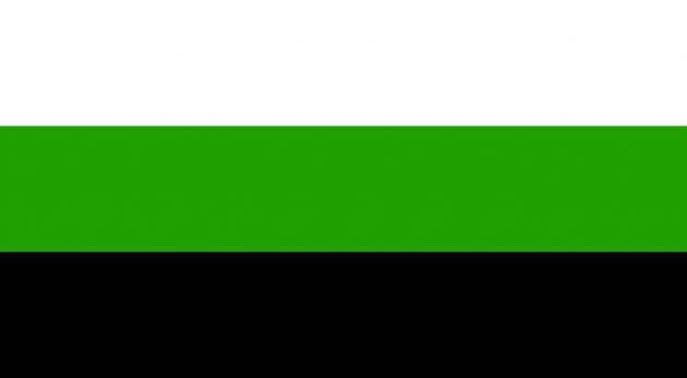 bandiera neutrois, bandiera lgbtq