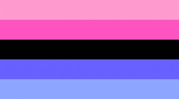 bandiera omnisessuale, bandiera lgbtq