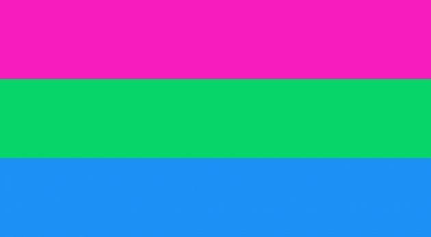 bandiera polisessuale, bandiere lgbtq