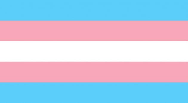 bandiera lgbtq, bandiera transgender, Monica Helms, guida completa